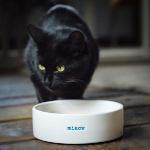 "Ceramic cat bowl ""Miaow"""